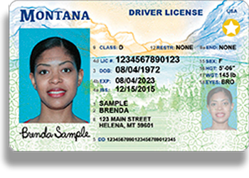 helena mt drivers license appointments